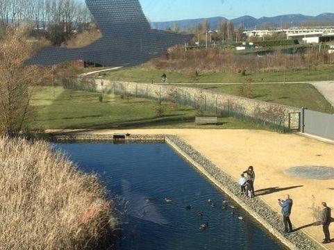 El Ataria en Vitoria-Gasteiz para niños aves