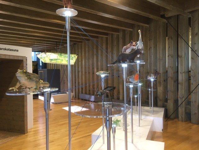 Centro de interpretación de aves Ataria en Vitoria-Gasteiz