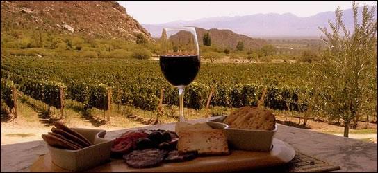 La Rioja Alavesa y sus Bodegas
